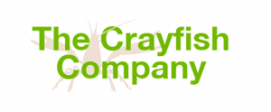 The crayfish company